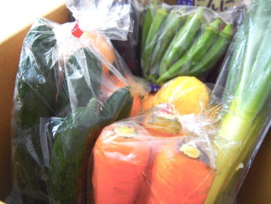 段ボール詰めされた野菜